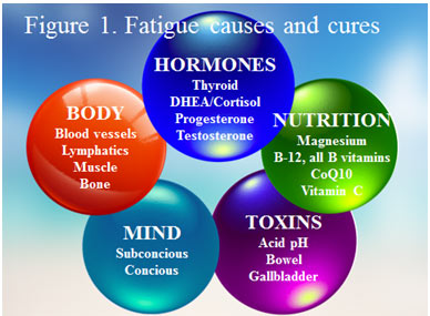 adrenal-fatigue-image-1